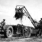 Las económias regionales en el gobierno de Frondizi: la industria azucarera