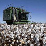 El potencial argentino: el desafío del desarrollo de las provincias