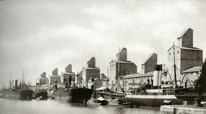 El modelo agroexportador argentino.Buques cerealeros en el puerto de Buenos Aires a fines del siglo XIX.